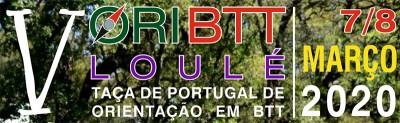 20200307 v oribtt logo2.jpg